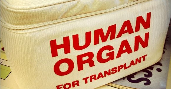 Organ Transplant Law: Assessing compatibility with the right to health 1