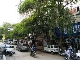 How can policy and regulation help fix Bengaluru's environment? | Citizen Matters 1